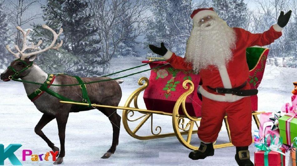 Navidad, Pápa noel, Osos Polares