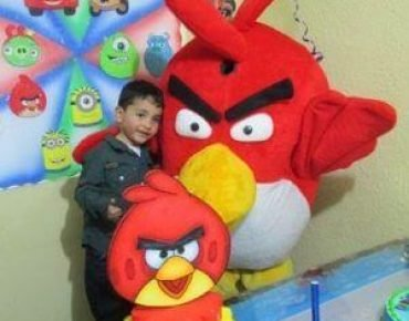 recreacionistas fiestas infantiles bogota economicos,451106